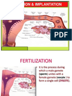 2-Fertilization & Implantation
