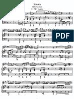 Cpe Bach Flute Sonata in e