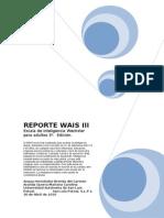 93571668 Reporte Del Wais Completito