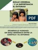 Anna Lucia Campos - Desarrollo Cerebral Infantil