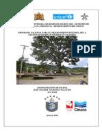 PGIRS Medio San Juan