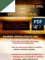 Angulo Iridocorneal