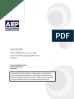 INFORME PSICOPEDAGOGIC1