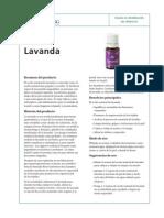 PIP Lavender