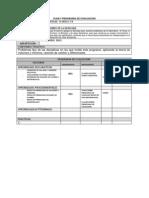 Plan y Programa de Evaluacion Matevi Areai y II 3