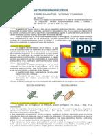 Procesos Geologicos Internos(Magmaticos y Metamorficos)