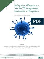A Importancia Dos Microrganismos Nos Alimentos e Dervados