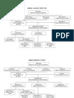 Arbol Causas y Efectos Quinchihua