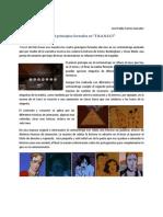 """Principios Formales del cine """"Transit"""""""