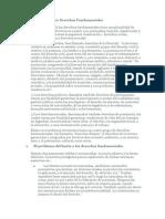 Clasificación de los Derechos Fundamentales