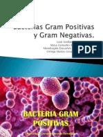 Gam  y Gram-.pptx