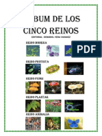 Album de Los Cinco Reinos