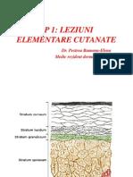 Lp1 Leziuni Elementare Cutanate