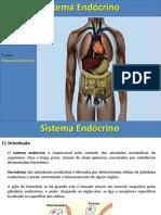 sistemaendocrino-120618081520-phpapp01