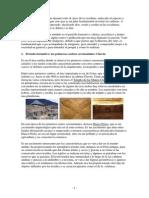 portafolio_modulo1_estefania_juarez.pdf