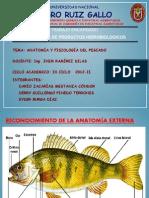 Diapositiva de Hidrobiologicos