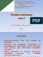 Arahno-Entomoze