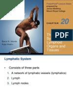 Anatomy Lymphatic System