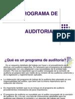 CASOS Programa de Auditoria