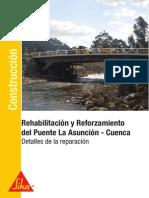 Reforzamiento Puente La Asuncion