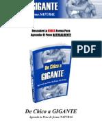 165199478 El Libro Original de Chico a Gigante
