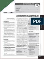 PROCESO CONTABLE EN LA ACTIVIDAD EMPRESARIAL DEL SECTOR PUBLICO.pdf