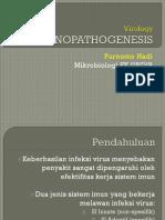 02 Virology Imuno