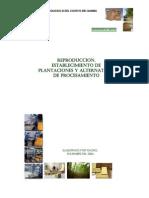 Produccion y Procesamiento de Bambu