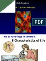 Biokimia Cell Dan Fungsinya