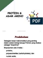 Protein & Asam Amino