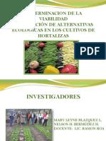 Cultivos organicos(Germary)