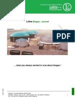 001 Biogasinformation Englisch