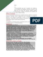 2da Lectura Polimeros Artificiales