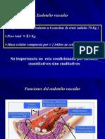 Disf Endotelialrafaelr Cruzrmz Yubaldorodriguezvalenciafisiopatologia2 090912203059 Phpapp01