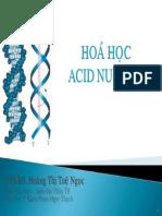 HH Acid Nucleic