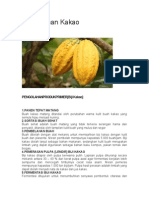 Pengolahan Kakao