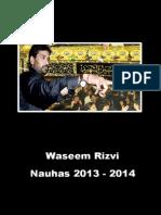 Waseem Rizvi 2013 - 2014