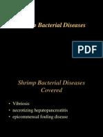 Lecture 9a Shrimp Bacterial Diseases