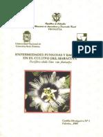 Enfermedades Fungosas y Bacterianas en El Cultivo de Maracuya