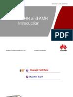 Half Rate & AMR Description