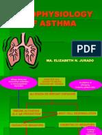 Pathophysiology of Asthma