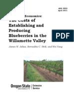 Blueberries production economics