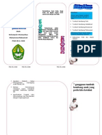 Leaflet Posyandu Printt
