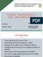 Vision Panoramica Del Metabolismo - Copia