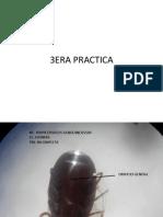 3era Practica