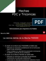 MECHAS FM3000_Customer_Pres. Español