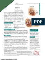 PDF Pat 111611