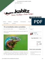 10 curiosidades sobre camaleões _ Zunkabitz