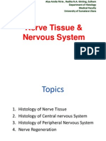 K1-Nerve Tissue & Nervous System (Histologi)