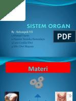 Sistem Organ Part 2